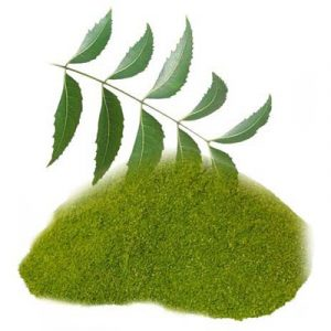 neem-patra-powder